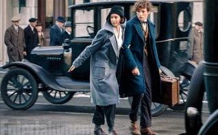 5 points communs entre Harry Potter et Les Animaux Fantastiques